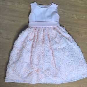 Pink American Princess Dress Size 8 worm once